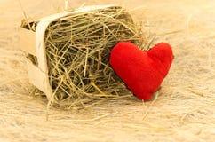 Carte d'amour Carte postale romantique Carte postale au jour du ` s de St Valentine Fift Photos stock