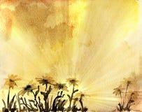 Carte d'aquarelle avec des marguerites Photographie stock libre de droits