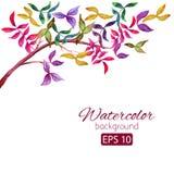Carte d'aquarelle avec les fleurs colorées décoratives Photos libres de droits