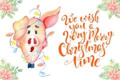 Carte d'aquarelle de Joyeux Noël avec la citation drôle mignonne de porc et d'inscription illustration libre de droits