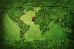 Carte d'herbe de monde Photos stock