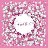 Carte d'invitation avec de petites fleurs blanches Images stock