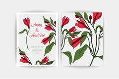 Carte d'invitation de mariage d'Alstroemeria La composition de vecteur du rose fleurit l'illustration Faire gagner la datte Alstr Images libres de droits