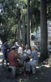 Carte da gioco degli uomini in Rio de Janeiro, Brasile Fotografia Stock