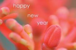 Carte de bonne année en nature Photo stock