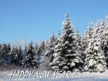 Carte de bonne année faite utilisant les arbres neigeux, Lithuanie image libre de droits