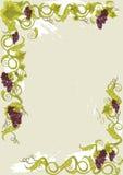 Carte de carte de raisins avec des vignes avec des lames. Photographie stock