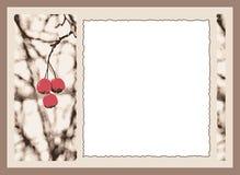 Carte de cerise illustration de vecteur
