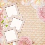 Carte de cru avec des roses illustration stock