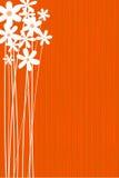 Carte de fleur Photos libres de droits
