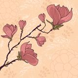 Carte de fleur de magnolia avec l'endroit pour votre texte Images libres de droits