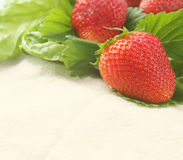 Carte de fraises Photo stock