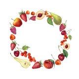 Carte de guirlande de fruit d'aquarelle Frontière peinte à la main avec le fruit d'été Photos stock