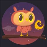 Carte de Halloween, silhouette de hibou avec de grands yeux se reposant sur une branche contre une pleine lune et ciel nocturne é Photos libres de droits