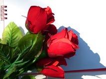 Carte de jour de Valentine Images stock