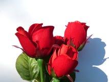 Carte de jour de Valentine Image libre de droits
