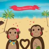 Carte de jour de valentines avec les singes romantiques de couples Fond d'été Beau singe Images libres de droits