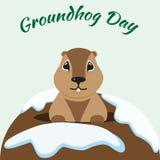 Carte de jour de Groundhog avec la marmotte mignonne Photos libres de droits