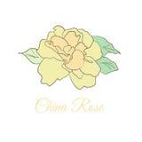 Carte de la Chine Rose Photo stock