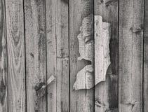 Carte de la Palestine sur le bois superficiel par les agents Photos stock