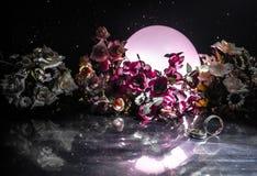 Carte de mariage, anneaux de mariage Bouquet de mariage, fond Branche fleurissante avec les fleurs sensibles blanches sur la surf Image libre de droits
