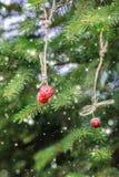 Carte de Noël avec des fraises sur une branche impeccable neige Photographie stock libre de droits