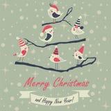 Carte de Noël avec des oiseaux Photos libres de droits