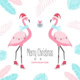Carte de Noël avec le flamant Photographie stock libre de droits