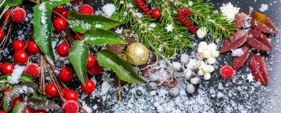 Carte de Noël des branches à feuilles persistantes, feuilles rouges, baie avec le sno photo libre de droits