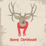 Carte de Noël principale de vintage de cerfs communs Image stock