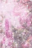 Carte de Noël rose élégante avec la chaussure scintillante Images stock