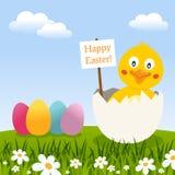 Carte de Pâques avec des oeufs et un poussin mignon Image libre de droits