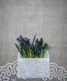 Carte de Pâques de ressort Wildflowers de dentelle et de ressort Photo libre de droits