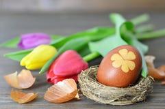 Carte de Pâques heureuse : Oeuf de pâques dans le nid et les tulipes Image stock