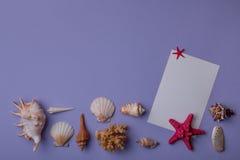 Carte de papier avec des coquillages sur le fond Photo libre de droits