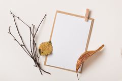 Carte de papier avec des lames d'automne Image libre de droits