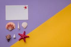 Carte de papier ou bon sur vif Photographie stock libre de droits
