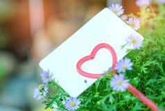 Carte de papier sur le coeur de tige pour la valentine Photographie stock libre de droits