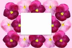 Carte de papier sur un fond floral photo stock