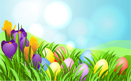 Carte de rayon de soleil de Pâques Image stock