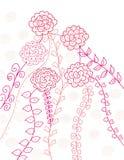 Carte de roses Photo stock