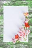 Carte de vacances avec le papier et les fleurs Image stock