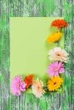 Carte de vacances avec le papier et les fleurs Photographie stock libre de droits