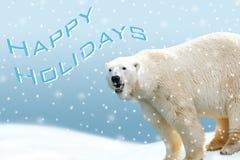 Carte de vacances d'ours blanc Photographie stock