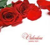Carte de Valentine Image libre de droits
