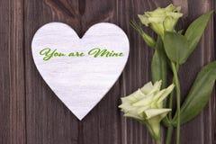 Carte de Valentine avec le texte vous êtes la mienne vert Image libre de droits