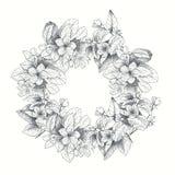 Carte de vecteur de vintage avec le cadre détaillé des roses de jardin sur un fond blanc Style victorien Image stock