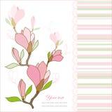 Carte de voeux avec des fleurs de magnolia Image libre de droits