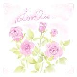 Carte de voeux avec des roses d'aquarelle Image stock