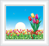 Carte de voeux avec des tulipes Image libre de droits